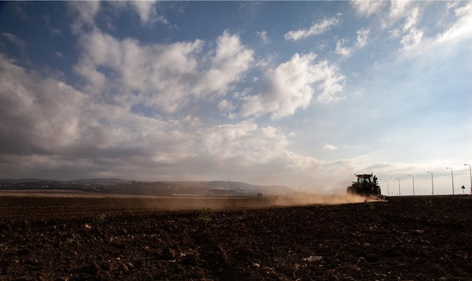 Tractor plows field in Israel